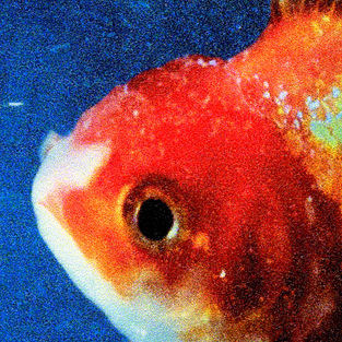 "Reviews Through A Friend: Vince Staples' ""Big Fish Theory"""