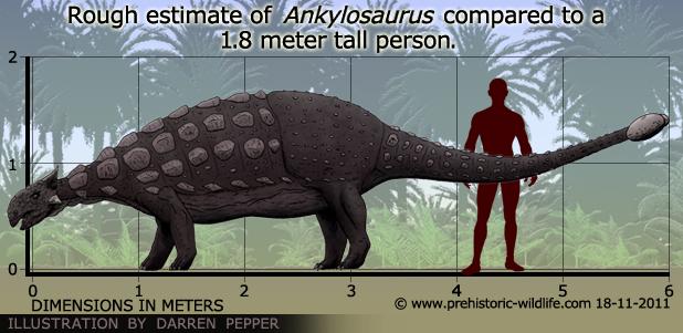 ankylosaurus-size